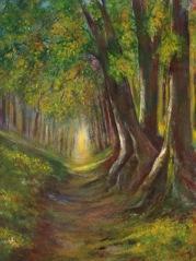 Woodland Walk (Acrylics) by Muriel Elliott