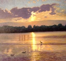 Birds - Lake Illawara Australia by Peter Montgomery
