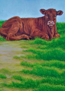 KBrown_Cow_450