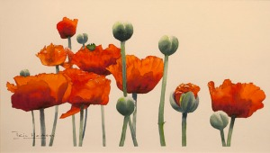 IHarkess_Poppies2_450