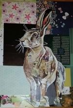 17931 Hare_550.jpg